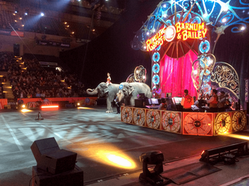 Ringling Bros. & Barnum and Bailey Circus