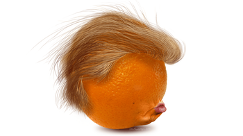 Trump Orange Head